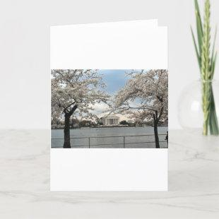 Jefferson Memorial Washington DC Cherry Blossoms Card